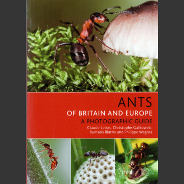 Ants of Britain and Europe, Photographic Guide (Lebas, C. ym. 2019)