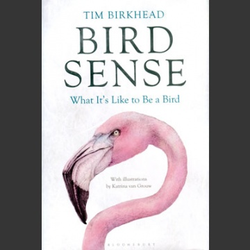 Bird Sense, what it's like to be a bird (Birkhead, T. 2012)