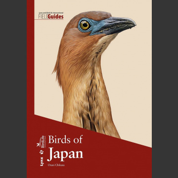 Birds of japan (Otami Chikara, 2019) Flexi