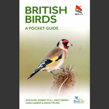 British Birds, Pocket Guide (Hume, R. ym. 2019)