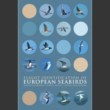 Flight Identification of European Seabirds (Blomdahl, A. 2007)
