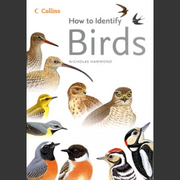 How to identify Birds (Hammond, N. 2006)
