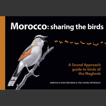 Morocco Sharing the Birds (Arnoud B van den Berg & The Sound Approach, 2020)