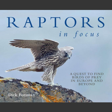 Raptors in Focus, Forsman, D. 2016