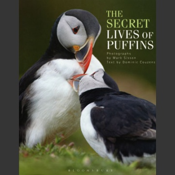 Secret lives of Puffins (Couzens, D. 2013)