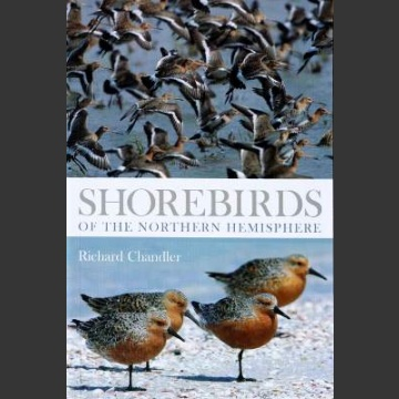 Shorebirds of Northern Hemisphere (Chandler, R. 2009)