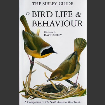 Sibley guide to bird life & behaviour