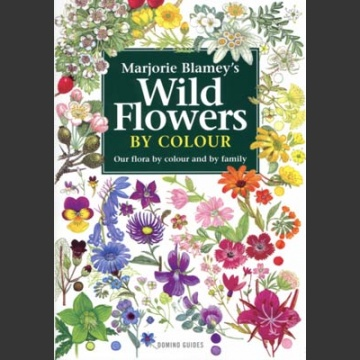 Wild Flowers by Colour (Blamey, M. 2007)