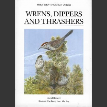 Wrens, Dippers and Thrashers (Brewer, D. ym. 2001)