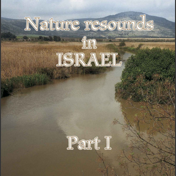 Nature resound in Israel part 1,  Hallikainen, L. 2006