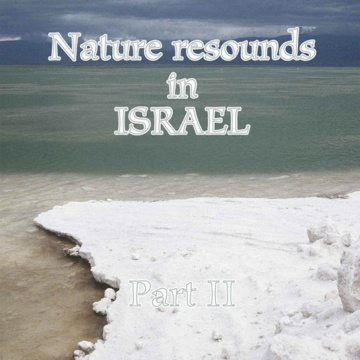 Nature resound in Israel part 2,  Hallikainen, L. 2006