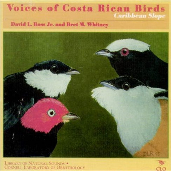Voices of the Costa Rican Birds, Caribbean Slope