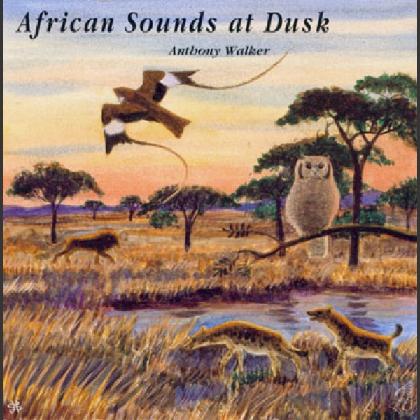 African sounds at Dusk CD; Walker A.