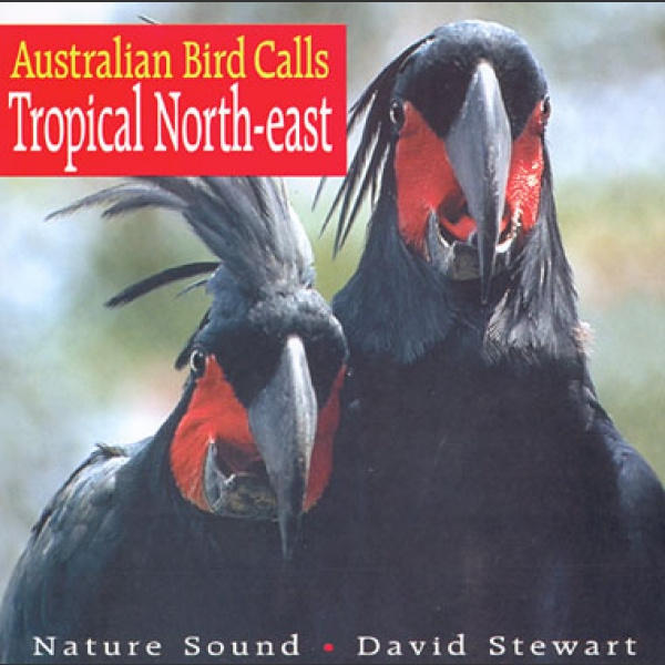 Australian Bird Calls: Tropical North-East