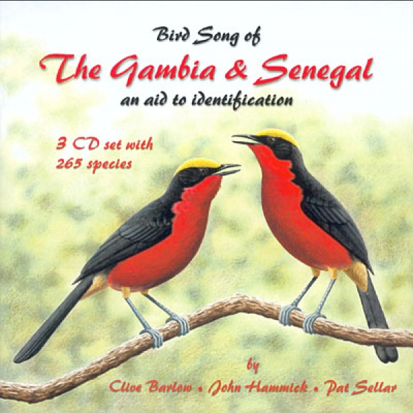 Bird song the Gambia and Senegal; Barlow, C., Hammick, J. & Sellar, P.