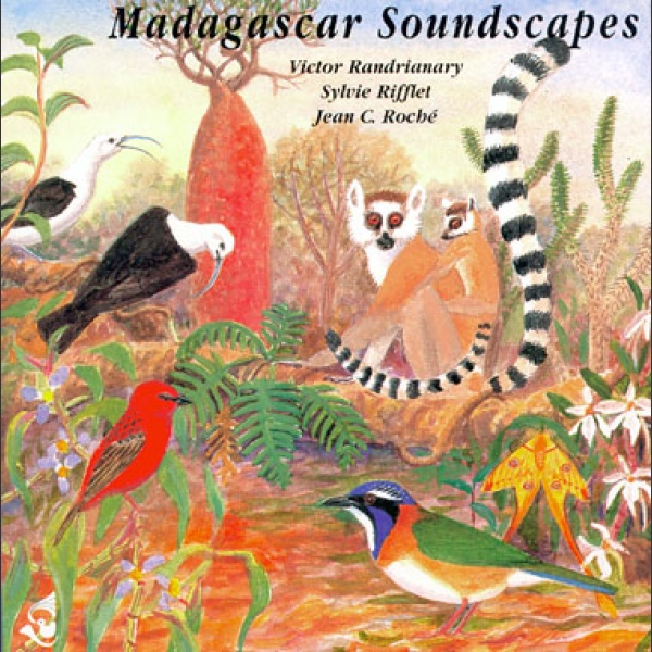 Madagascar Soundscapes CD; V. R., S. Rifflet, J. C. Roché