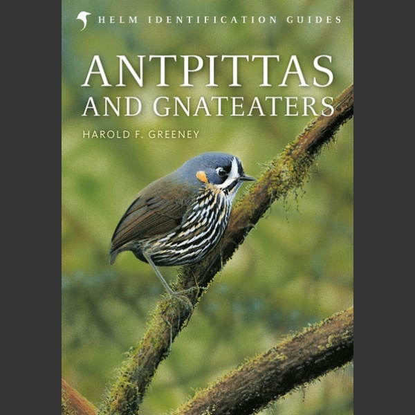Antpittas and Gnateaters (Greeney, H. F., 2018)