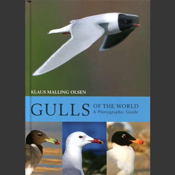 Gulls of the world (Malling Olsen, K. 2018)