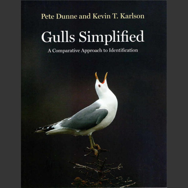 Gulls Simplified (Dunne, P. and Karlson, K. T. 2019)