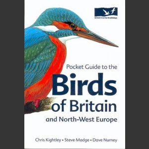 Pocket Guide to the Birds of Britain and North-west Europe (Knightley 2002)