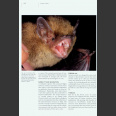 Bats of Britain, Europe and Northwest Africa, Dietz ym 2009